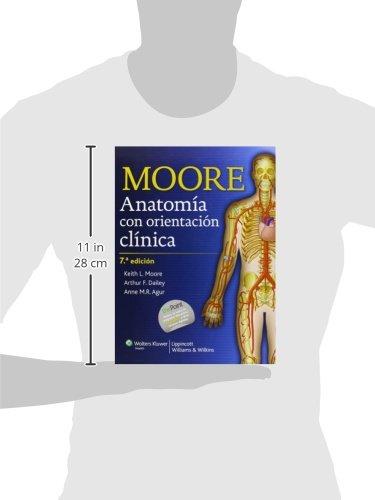 Anatomía con orientación clínica: Amazon.es: Moore: Libros en ...
