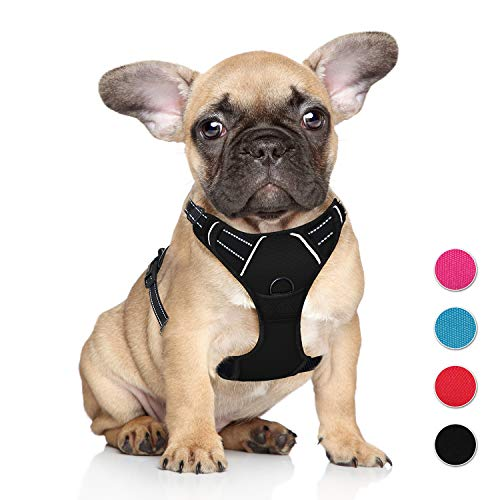 BARKBAY No Pull Dog Harness Step in Reflective Dog Harness with Front Clip and Easy Control Handle for Walking Training Running for Small Dog