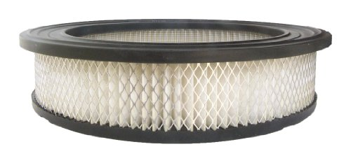 1959 59 Ford Ranch Wagon (ACDelco A2882C Professional Air Filter)