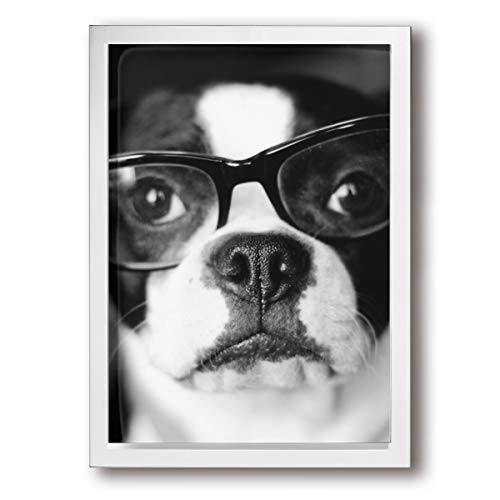 (Arnold Glenn Hipster Boston Terrier Canvas Wall Art Prints Picture Paintings Contemporary Decorative Giclee Artwork Wall Decor Wood Frame Ready to Hang)