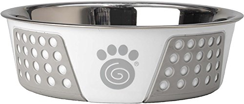PetRageous Fiji 6.5 Cups Stainless Steel Bowl in White/Light Gray Review