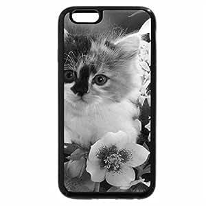 iPhone 6S Plus Case, iPhone 6 Plus Case (Black & White) - Kitten in Flowers
