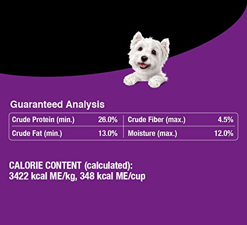 Cesar Small Breed Dry Dog Food Filet Mignon Flavor Real Beef Net Wt. 12.0 lbs