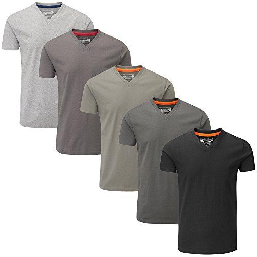Charles Wilson 5 Pack Plain V-Neck T-Shirt (3X-Large, Monochrome)