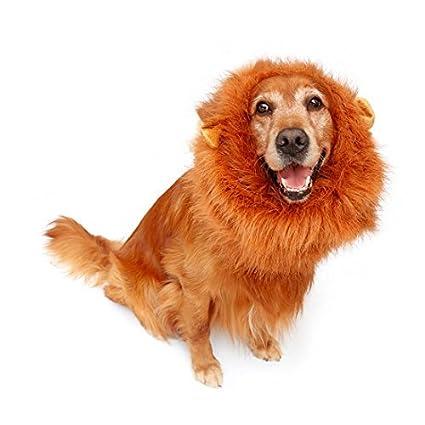 eDealMax Fiesta de Halloween perro de mascota Grande gato león Melena Sombrero de la peluca del
