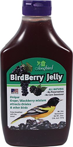 Songbird Essentials Bird Berry Jelly 20 Oz