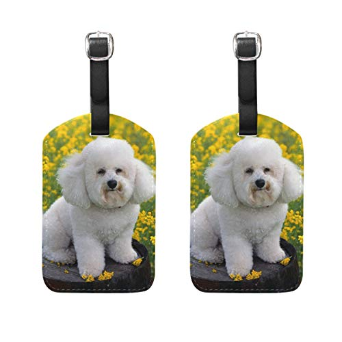 Luggage Tags Cute Puppy Bichon Frise Dogs Mens Tag Holder Kids Bag Labels Traveling Accessories Set of 2 (Leather Frise Tag Bichon Luggage)