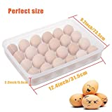 2 Pack Covered Egg Holders for Refrigerator,2 x 24