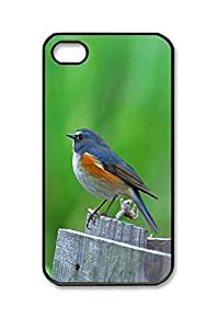 Beautifule PC Hard Shell Birds Variety 4 with Black Edges Skin for Iphone 4 4s Case