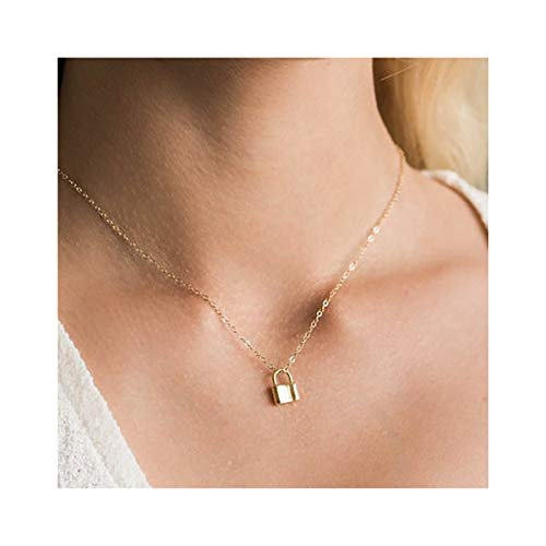 (Mevecco Gold Dainty Lock Necklace for Women,14K Gold Plated Cute Tiny Padlock Boho Love Elegant Necklace for Teen Girls)