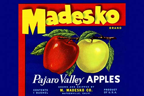 (ArtParisienne Madesko Pajaro Valley Apples 16x24-inch Wall Decal)