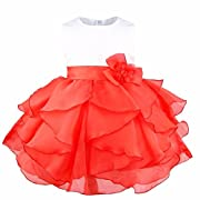 FEESHOW Baby Girls Organza Ruffle Wedding Party Christening Baptism Flower Dress Red 3-6 Months