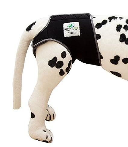 Dog in Season / Dog Heat Nappy Pants / Dog Incontinence Pants / Dog  Protective Pants / Dog Diaper