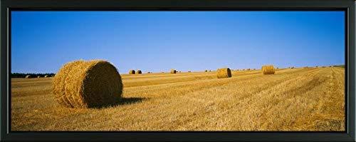- Easy Art Prints Panoramic Images's 'Haystacks in a Field, North Dakota, USA' Premium Framed Canvas Art - 24