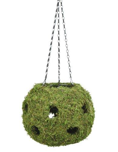 (SuperMoss (29342) MossWeave - Hanging Ball Planter, Fresh Green, 12