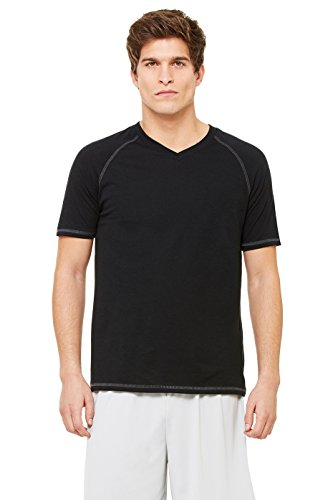 Zara Yoga Studio |LA| Sport Men's Performance Triblend Short Sleeve V-Neck Tee (Small /Solid Black Triblend)