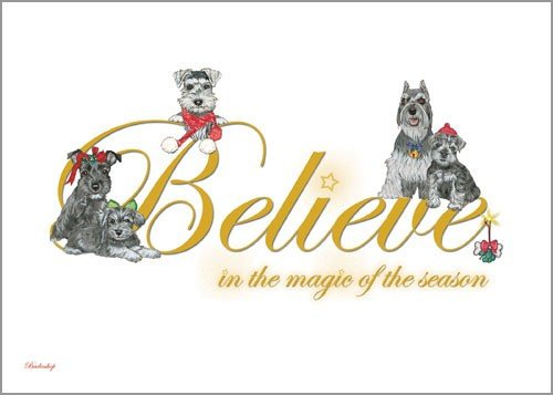 Pipsqueak Productions C702 Schnauzer Believe Christmas Boxed Cards - Pack of 10