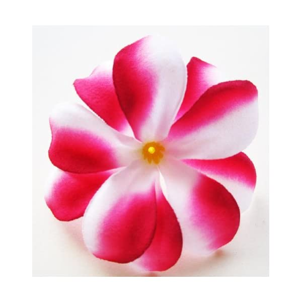 (100) Red White Hawaiian Plumeria Frangipani Silk Flower Heads – 3″ – Artificial Flowers Head Fabric Floral Supplies Wholesale Lot for Wedding Flowers Accessories Make Bridal Hair Clips Headbands Dress