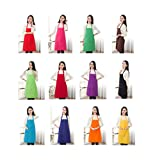 TSD STORY Total 12 PCS Plain Color Bib Apron Adult with 2 Front Pocket