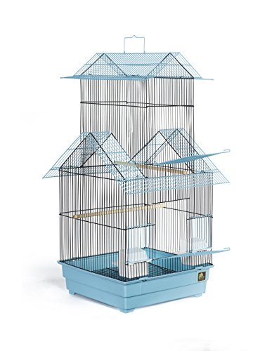 Prevue Pet Products Beijing Bird Cage, Blue and Black by Prevue Hendryx