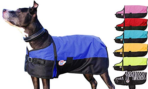 Derby Originals Horse Tough 600D Waterproof Ripstop Dog Coat with 1 Year Warranty - Medium Weight 150g Polyfil & Breathable Inner Lining  - Two Tone Design in Multiple Colors & Sizes