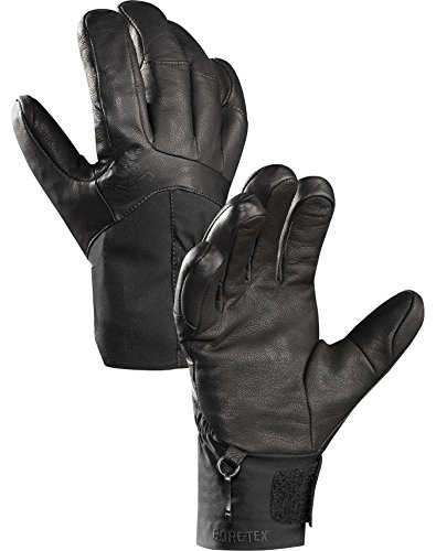 UPC 806955856002, Arcteryx Anertia Glove - Women's Black XS