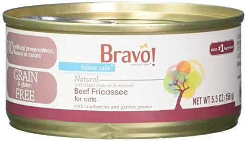 Bravo! Raw Diet 294183 24/5.5 oz Feline Café Beef Fricassee Cat