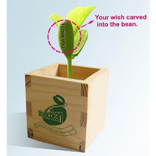 Wrapables I Talking Bean - I Love You ()