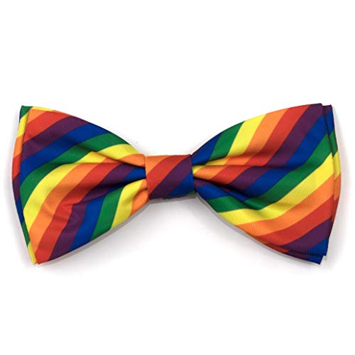 The Worthy Dog Rainbow Stripe Pattern Bow Tie for Pets Multi, SM -