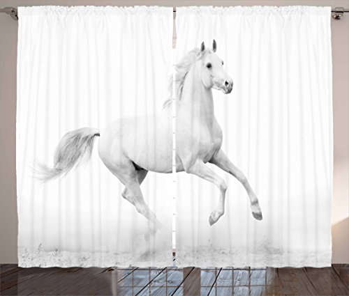 Cheap Ambesonne Black and White Decorations Curtains, White Stallion Running Horse Gallop Motion Speed Equestrian, Living Room Bedroom Window Drapes 2 Panel Set, 108 W X 63 L Inches, White Black