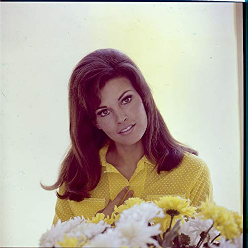 (Raquel Welch Glamour Portrait Photo Yellow top by flowers original Transparency)
