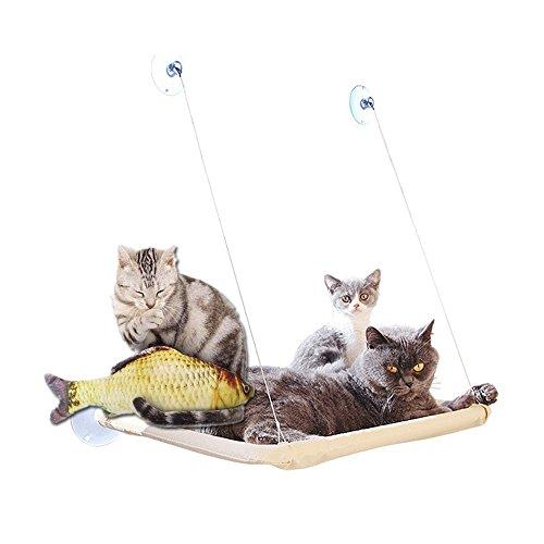 Katzen HäNgematte Katzenbett Katze Betten Sonnenschein Fenster FensterpläTze Bett Bequem Hanging Haustier füR Kleine…