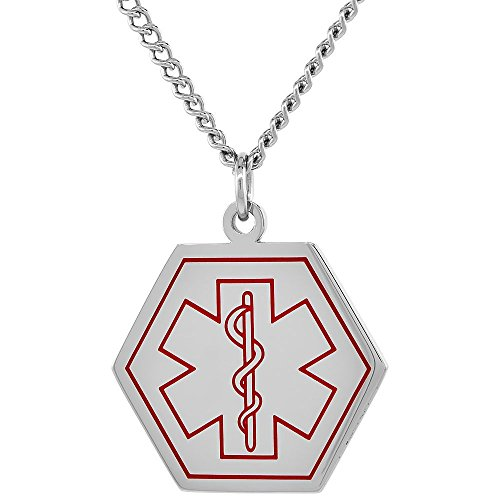 Surgical Steel Medical Alert Necklace Type 2 Diabetic Hexagon Shape ID 1 inch wide, 30 inch (Diabetic Type 2 Necklace compare prices)