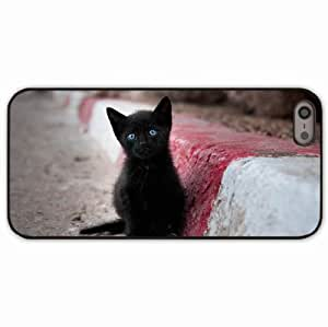 iPhone 5 5S Black Hardshell Case kitten stand Desin Images Protector Back Cover