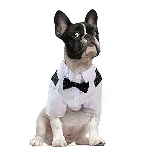 Black  4 Chest 22\ Black  4 Chest 22\ LESYPET Dog Bow Tie Costume Dog Tuxedo Costume for Dogs Cats Business Suit Costume for Pets  4