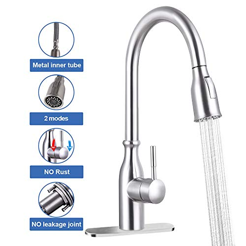 GOODNEW Single Handle High Arc Pull Out Kitchen Faucet,2 Water Mode Single Level Stainless Steel Kitchen Sink Faucets with Pull down Sprayer