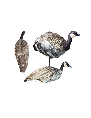 Canada Geese Decoy Combo by Montana Decoy
