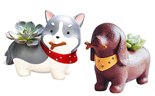 2PCS Cute Dog Shaped Cartoon Home Decoration Succulent Va...