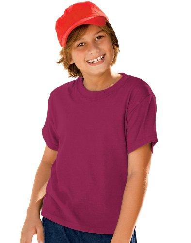 Hanes Cardinal Blend Shirt - 9