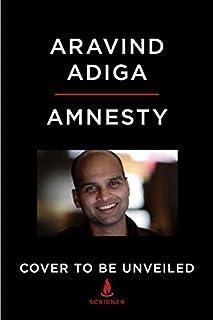 Book Cover: Amnesty: A Novel