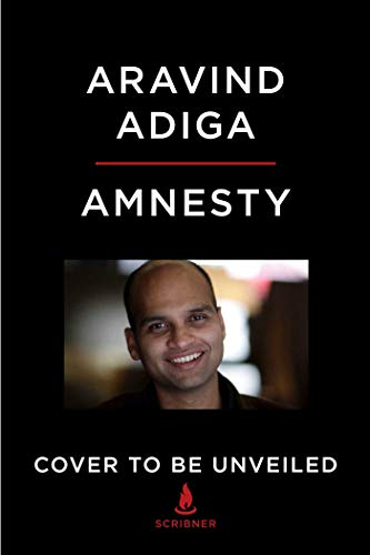 Book Cover: Amnesty: A Novel
