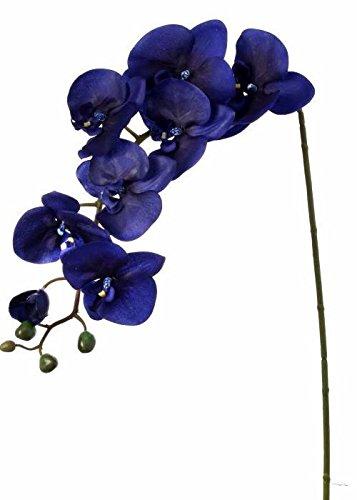 Spray Phalaenopsis (Afloral Silk Flower Phalaenopsis Orchid Spray in Dark Indigo Blue - 38