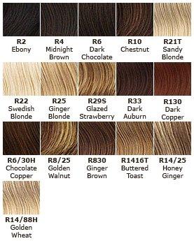 Jessica Simpson HairDo 22 Inch Clip-in Straight Extension, R10 Chestnut