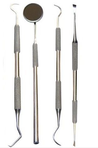 Smile Dent Pro Dental Tools Pick Dental Floss Gum Floss Toothpicks Dental Hygiene Kit Set Dental Instruments High Grade Stainless Steel Tartar Scraper Tartar Remover