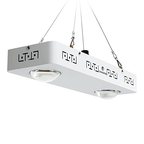 Cree Led For Grow Lights