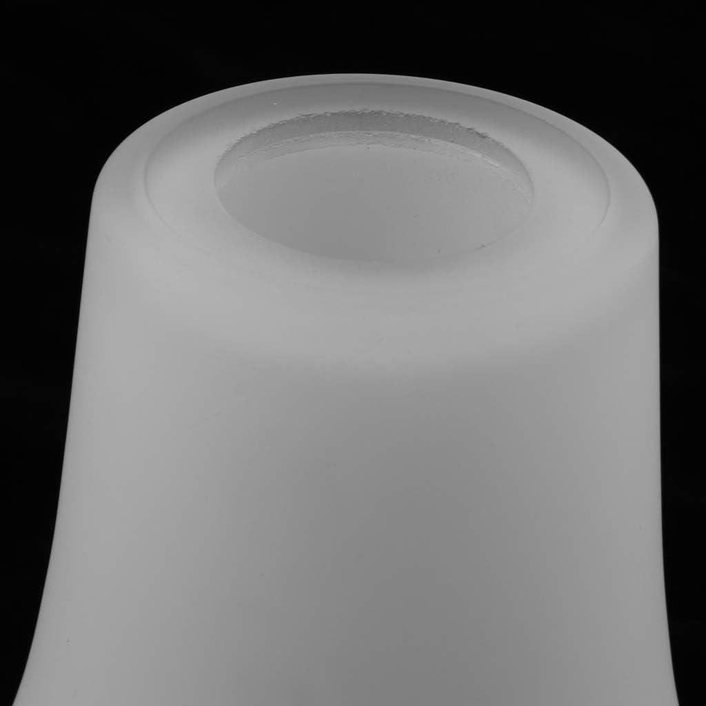 FLAMEER E27 Abat-Jour Suspension de Lampe au Plafond Applique Murale en Verre Clair OL-003