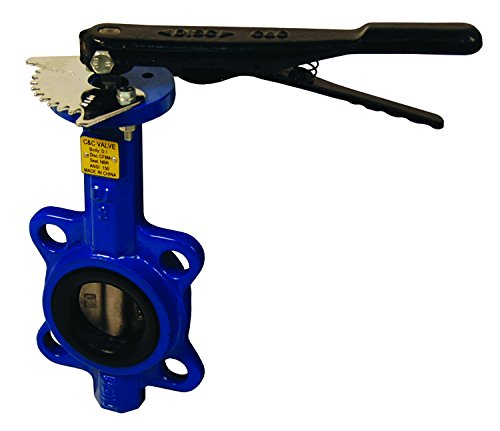 (Dixon BFVW200 Wafer Style Butterfly Valve, Buna Liner, Stainless Disc, 2