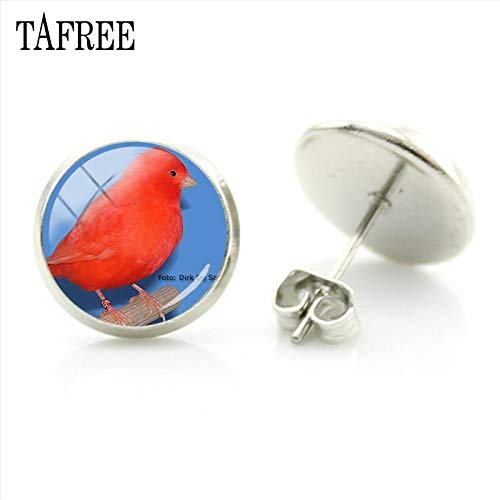 Stud Earrings - New Fashion Red Canary Birds Stud Earrings Classic Style Glass Cabochon Dome Elegant Ornaments for Decoration CA01 - by Mct12-1 PCs
