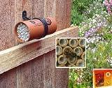 Mason Bee Nest Gift Pack
