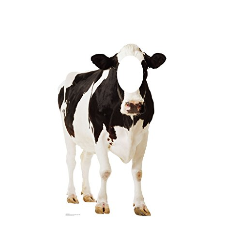 Cow Stand-In - Advanced Graphics Life Size Cardboard (Print Stand)